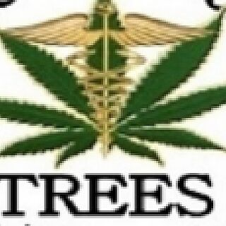 Trees By Healthy Living
