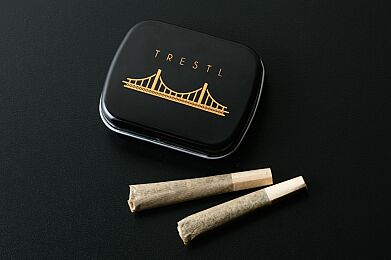 Trestl Assortment Box