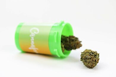 4. Girl Scout Cookie