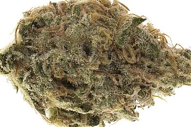Stardawg - Premium Flower - Just Herb