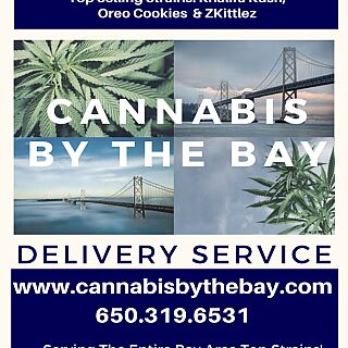 Cannabis by the Bay