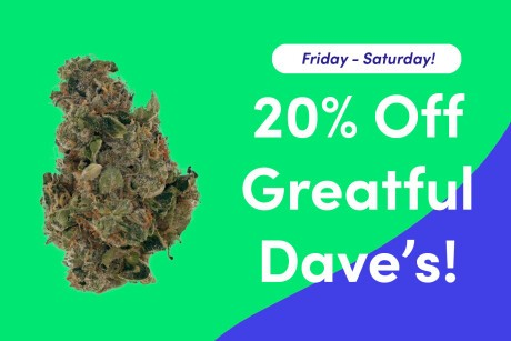 20% Off Greatful Dave's! Banner