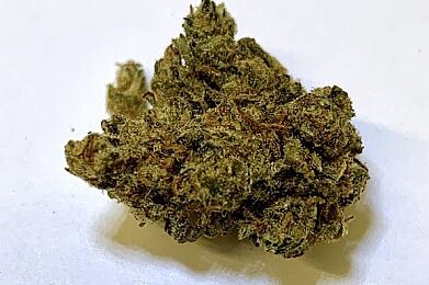 XJ-13 (5g for $40)