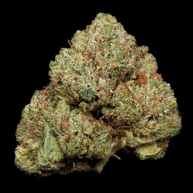 King Louie Og 3 5g Pistilpoint Marijuana Order Weed Online From Left Coast Collective