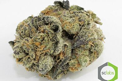 GIRL SCOUT COOKIES *$150OZ SPECIAL*