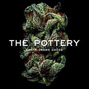The Pottery - Medical