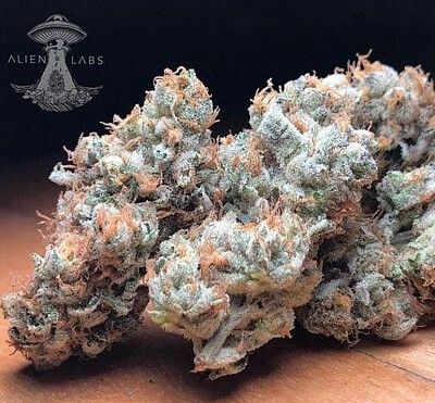 GMO Cookies Marijuana, Order Weed Online From Connected Cannabis Co