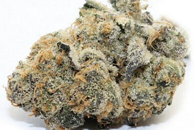 Candyland Eighth