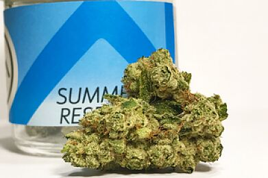 Holy Grail by Summer Reserve
